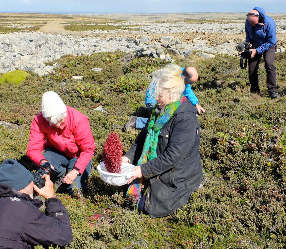 BBC's Island Parish – Falkland Islands