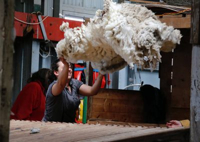 Throwing the fleece